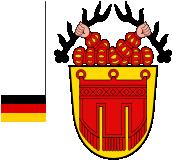 Drapeau et blason de Tubingen