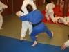 Les judokas sur tatamis